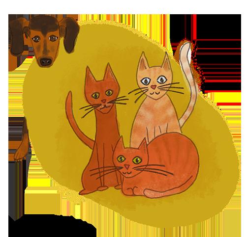 cats-illustration-obm-graphic